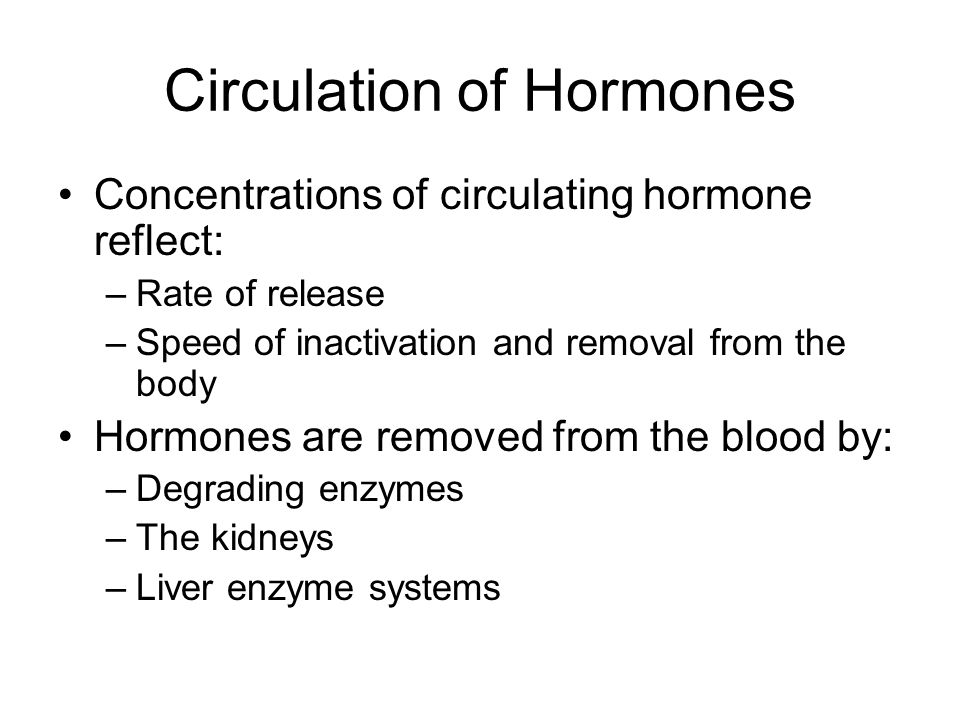 Circulation of Hormones Concentrations of circulating hormone reflect: –Rate of release –Speed of inactivation and removal from the body Hormones are