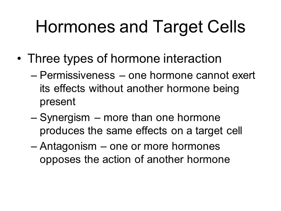 Hormones and Target Cells Three types of hormone interaction –Permissiveness – one hormone cannot exert its effects without another hormone being pres