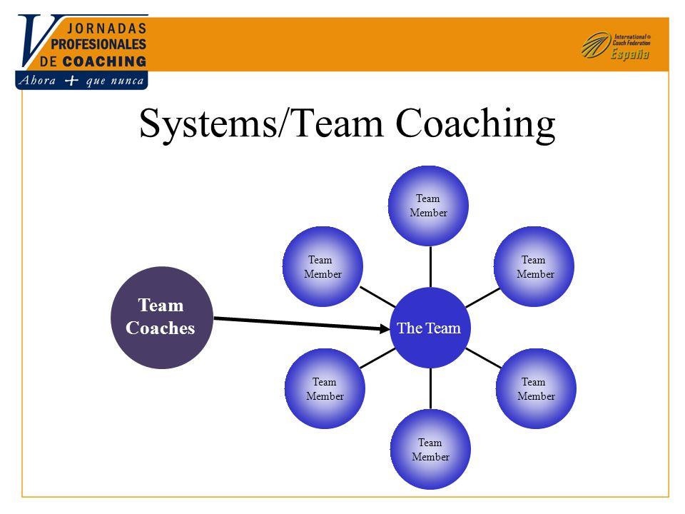 Systems/Team Coaching Team Member Team Member Team Member Team Member Team Member Team Member The Team Team Coaches