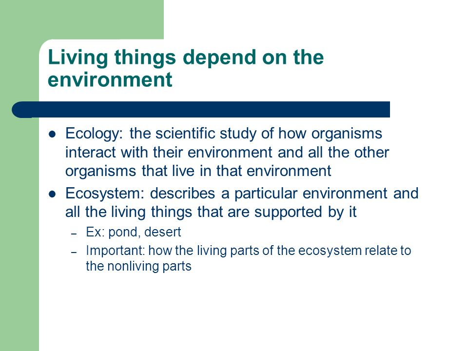 Living things depend on the environment Ecology: the scientific study of how organisms interact with their environment and all the other organisms tha