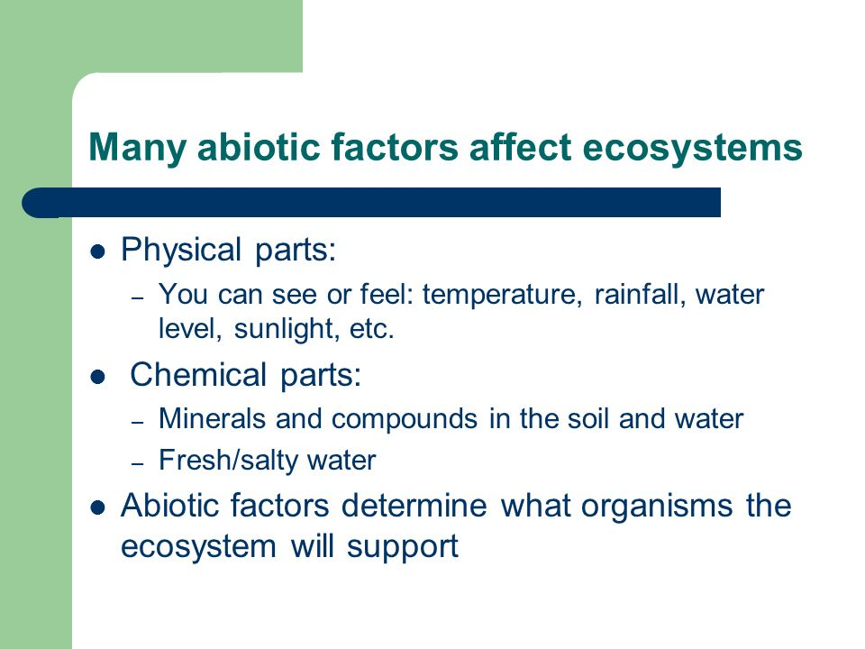 Many abiotic factors affect ecosystems Physical parts: – You can see or feel: temperature, rainfall, water level, sunlight, etc. Chemical parts: – Min