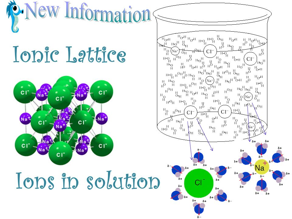 Ionic Lattice Ions in solution