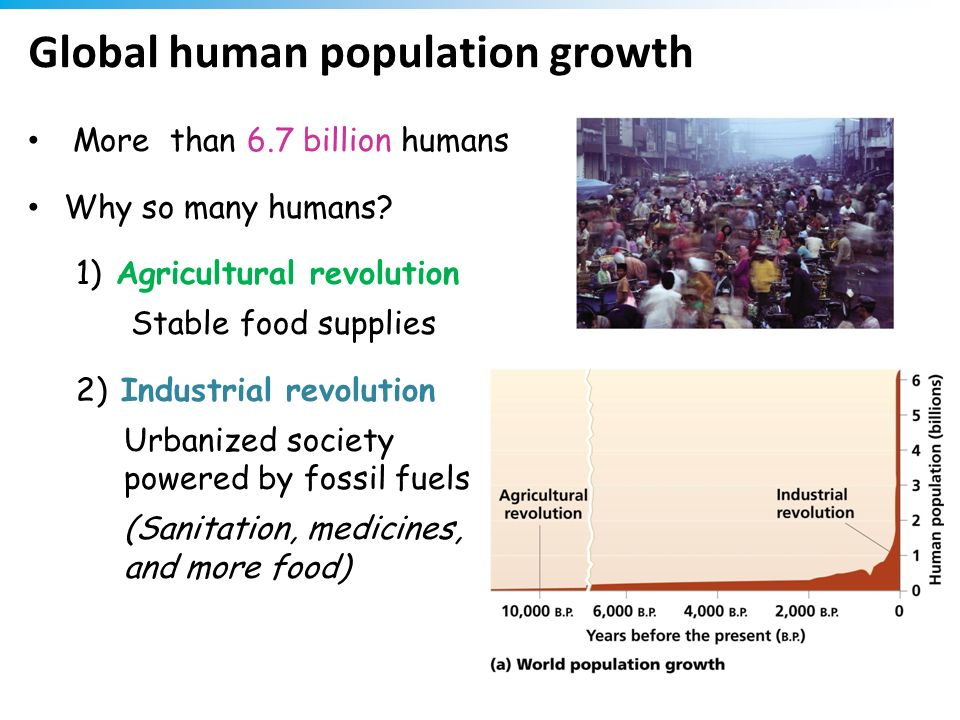 Global human population growth More than 6.7 billion humans Why so many humans? 1) Agricultural revolution Stable food supplies 2) Industrial revoluti