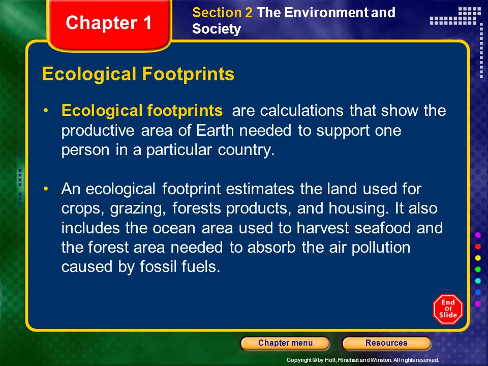 Copyright © by Holt, Rinehart and Winston. All rights reserved. ResourcesChapter menu Ecological Footprints Ecological footprints are calculations tha