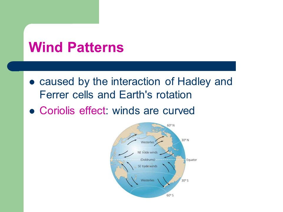 Wind Patterns caused by the interaction of Hadley and Ferrer cells and Earth's rotation Coriolis effect: winds are curved