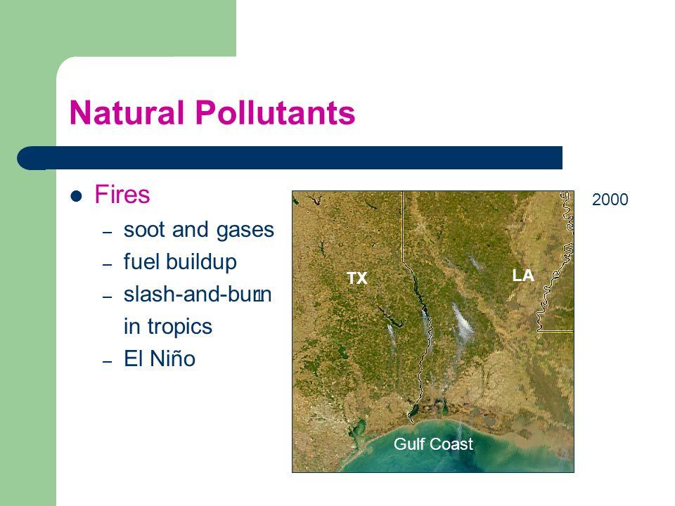 Natural Pollutants Fires – soot and gases – fuel buildup – slash-and-burn in tropics – El Niño 2000 Gulf Coast T TX LA