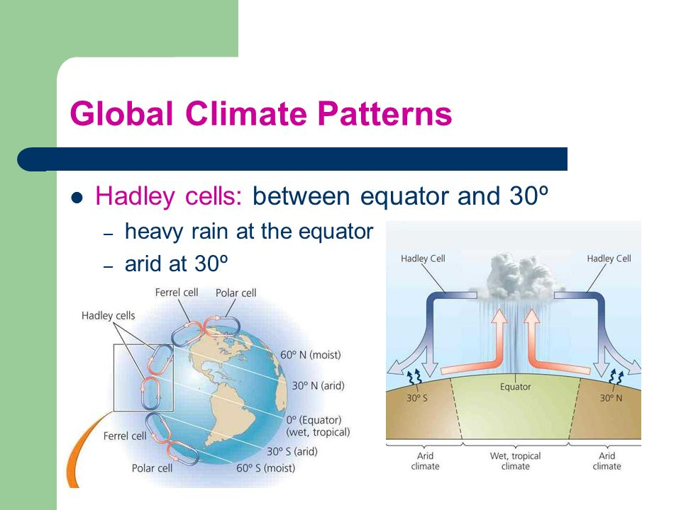 Global Climate Patterns Hadley cells: between equator and 30º – heavy rain at the equator – arid at 30º