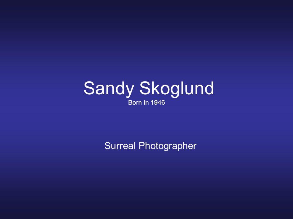 Sandy Skoglund Born in 1946 Surreal Photographer