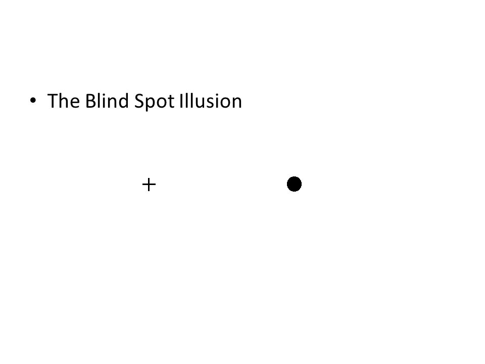 The Blind Spot Illusion