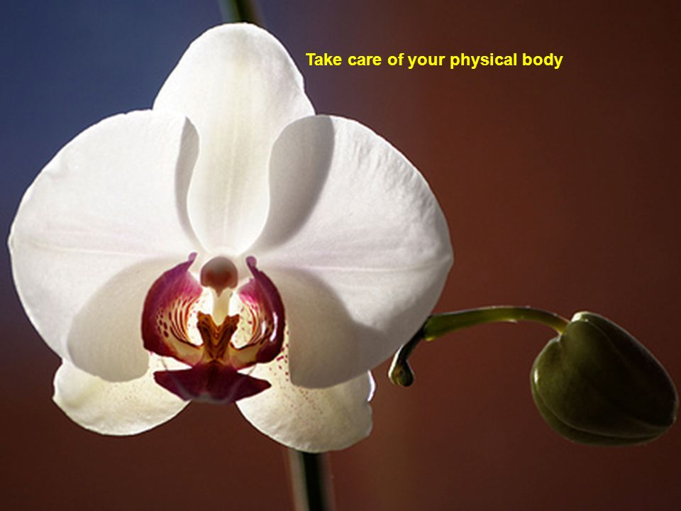 Take care of your physical body