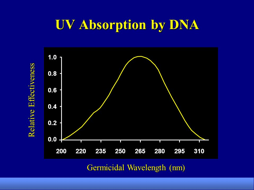 UV Absorption by DNA Relative Effectiveness Germicidal Wavelength (nm) 0.0 0.2 0.4 0.6 0.8 1.0 200220235250265280295310