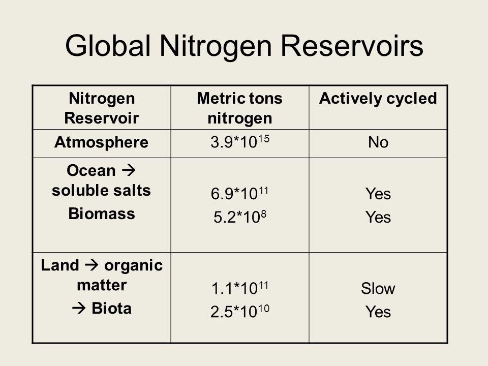 Forms of Nitrogen Urea CO(NH2)2 Ammonia NH 3 (gaseous) Ammonium NH 4 Nitrate NO 3 Nitrite NO 2 Atmospheric Dinitrogen N 2 Organic N
