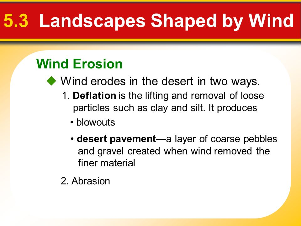 Wind Erosion 5.3 Landscapes Shaped by Wind Wind erodes in the desert in two ways. 1. Deflation is the lifting and removal of loose particles such as c