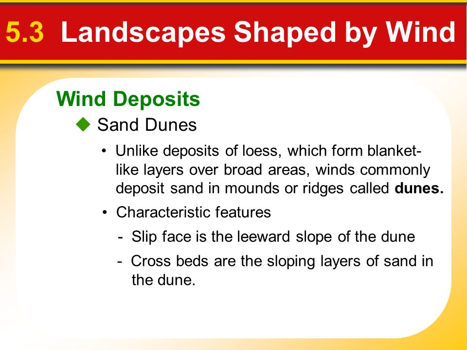 Wind Deposits 5.3 Landscapes Shaped by Wind Sand Dunes Unlike deposits of loess, which form blanket- like layers over broad areas, winds commonly depo