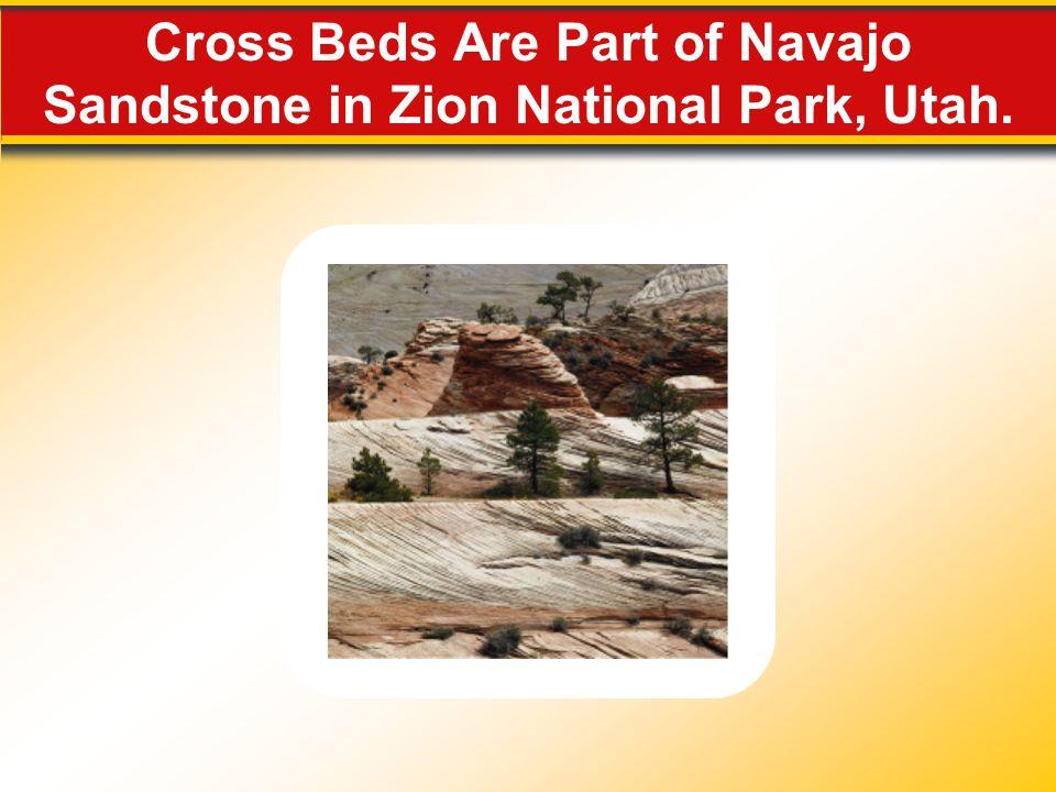 Cross Beds Are Part of Navajo Sandstone in Zion National Park, Utah.