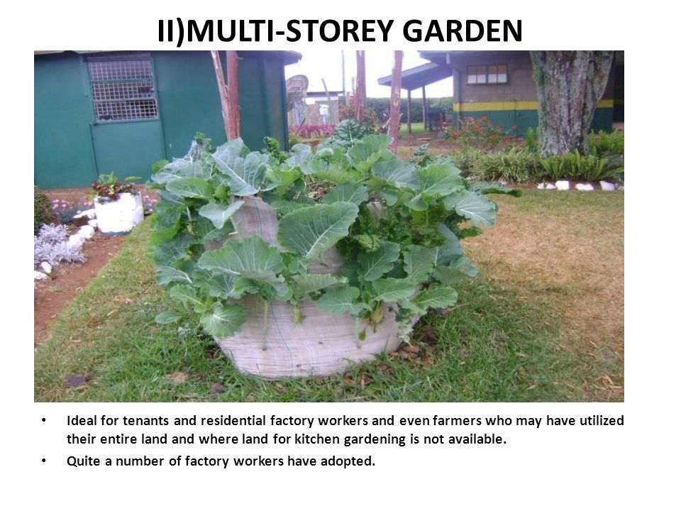 II)MULTI-STOREY GARDEN Ideal for tenants and residential factory workers and even farmers who may have utilized their entire land and where land for k