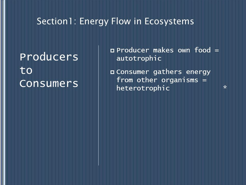 Section1: Energy Flow in Ecosystems Producer makes own food = autotrophic Consumer gathers energy from other organisms = heterotrophic * Producers to