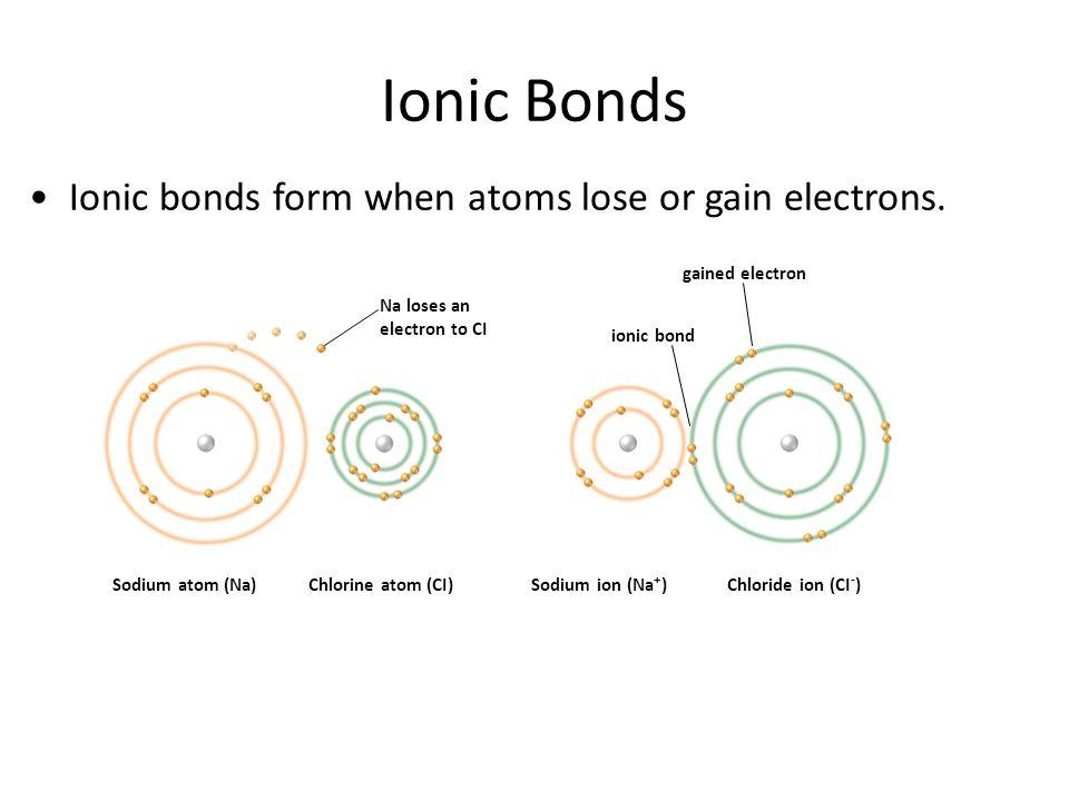 Ionic Bonds Ionic bonds form when atoms lose or gain electrons. Sodium atom (Na)Chlorine atom (CI)Sodium ion (Na + )Chloride ion (CI - ) Na loses an e