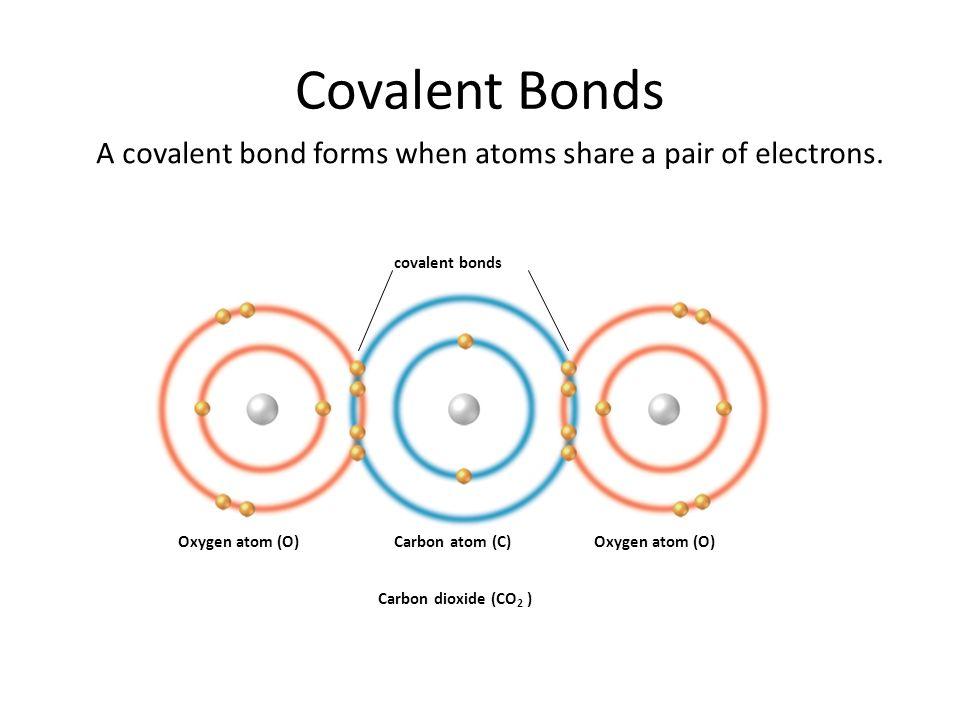 Covalent Bonds covalent bonds Oxygen atom (O)Carbon atom (C)Oxygen atom (O) Carbon dioxide (CO 2 ) A covalent bond forms when atoms share a pair of el