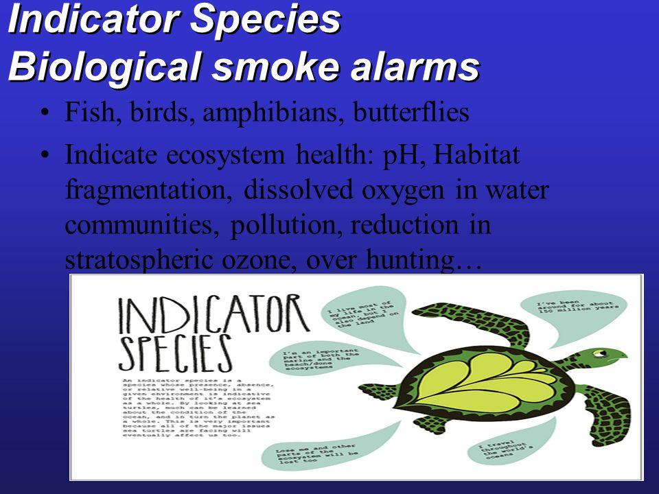 Indicator Species Biological smoke alarms Fish, birds, amphibians, butterflies Indicate ecosystem health: pH, Habitat fragmentation, dissolved oxygen