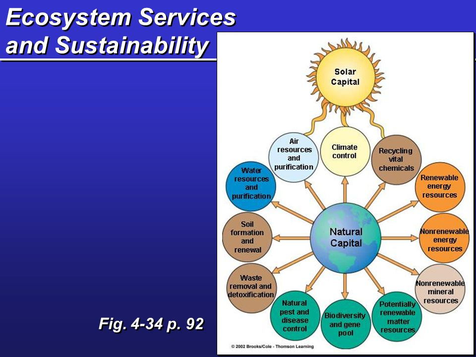 Ecosystem Services and Sustainability Fig. 4-34 p. 92
