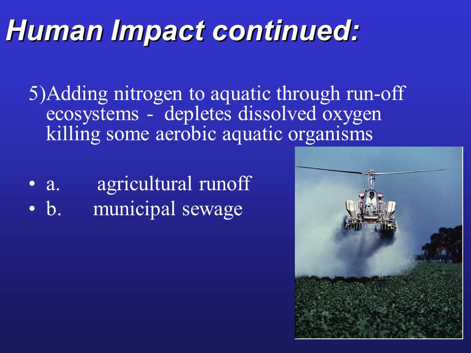 Human Impact continued: 5)Adding nitrogen to aquatic through run-off ecosystems - depletes dissolved oxygen killing some aerobic aquatic organisms a.