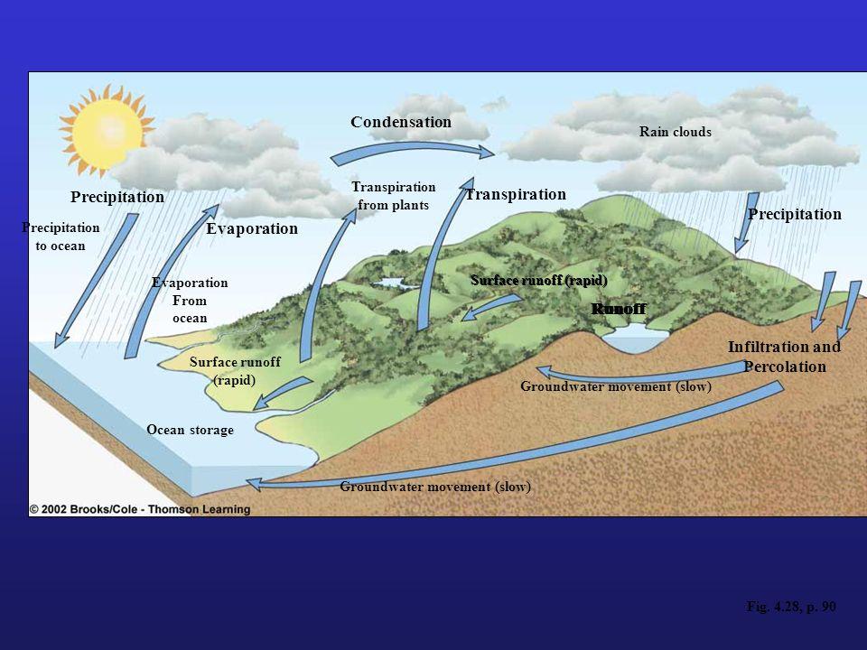 Fig. 4.28, p. 90 Precipitation to ocean Evaporation From ocean Surface runoff (rapid) Ocean storage Condensation Transpiration Rain clouds Infiltratio