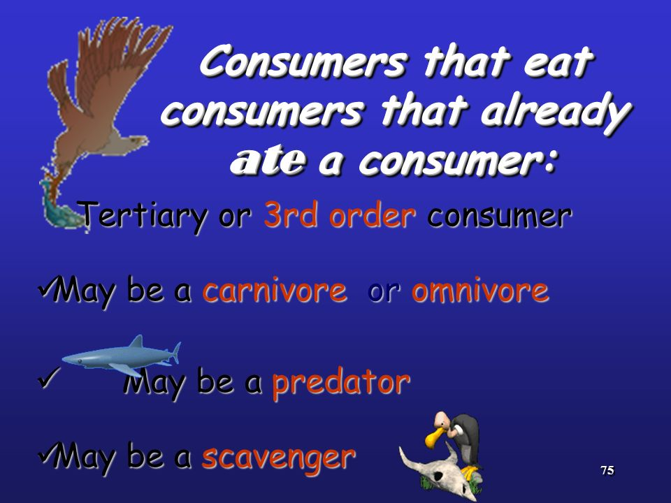 75 Consumers that eat consumers that already ate a consumer: Tertiary or 3rd order consumer Tertiary or 3rd order consumer May be a carnivore or omniv