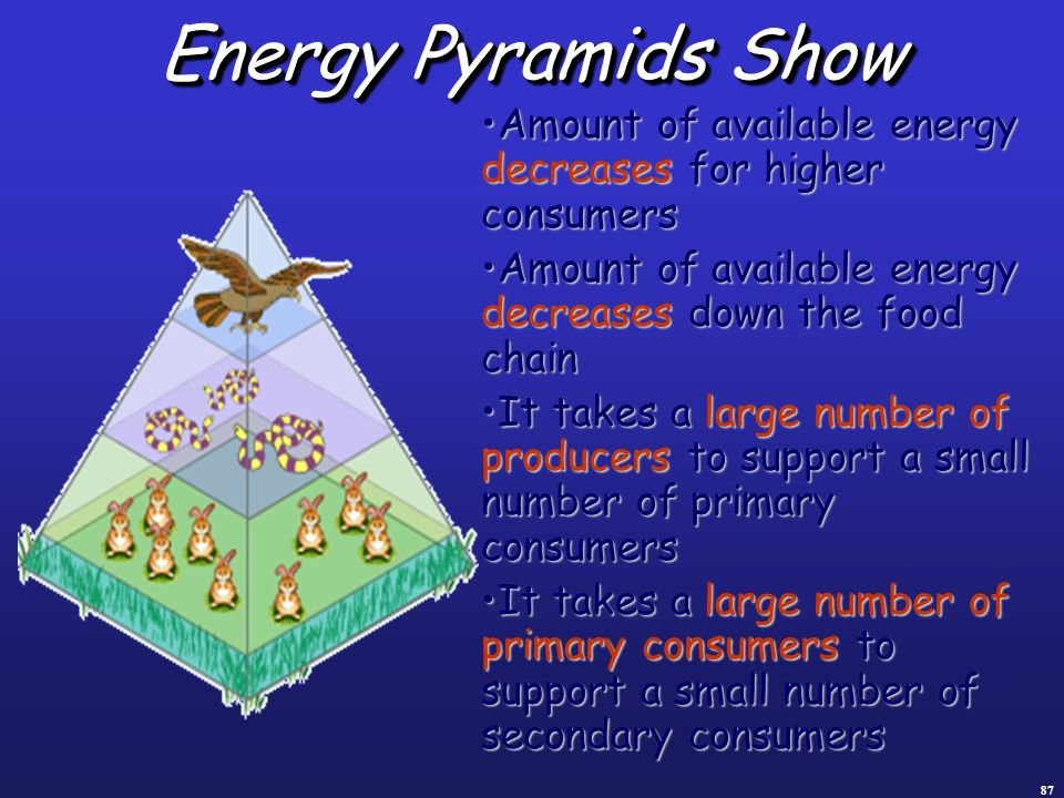 87 Energy Pyramids Show Amount of available energy decreases for higher consumersAmount of available energy decreases for higher consumers Amount of a