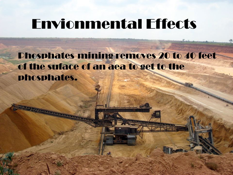 Envionmental Effects Phosphates mining removes 20 to 40 feet of the suface of an aea to get to the phosphates.