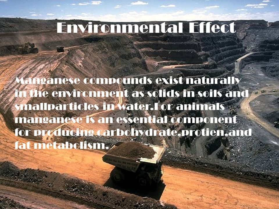 Environmental effect Environmental Effect Manganese compounds exist naturally in the environment as solids in soils and smallparticles in water.For animals manganese is an essential component for producing carbohydrate,protien,and fat metabolism.