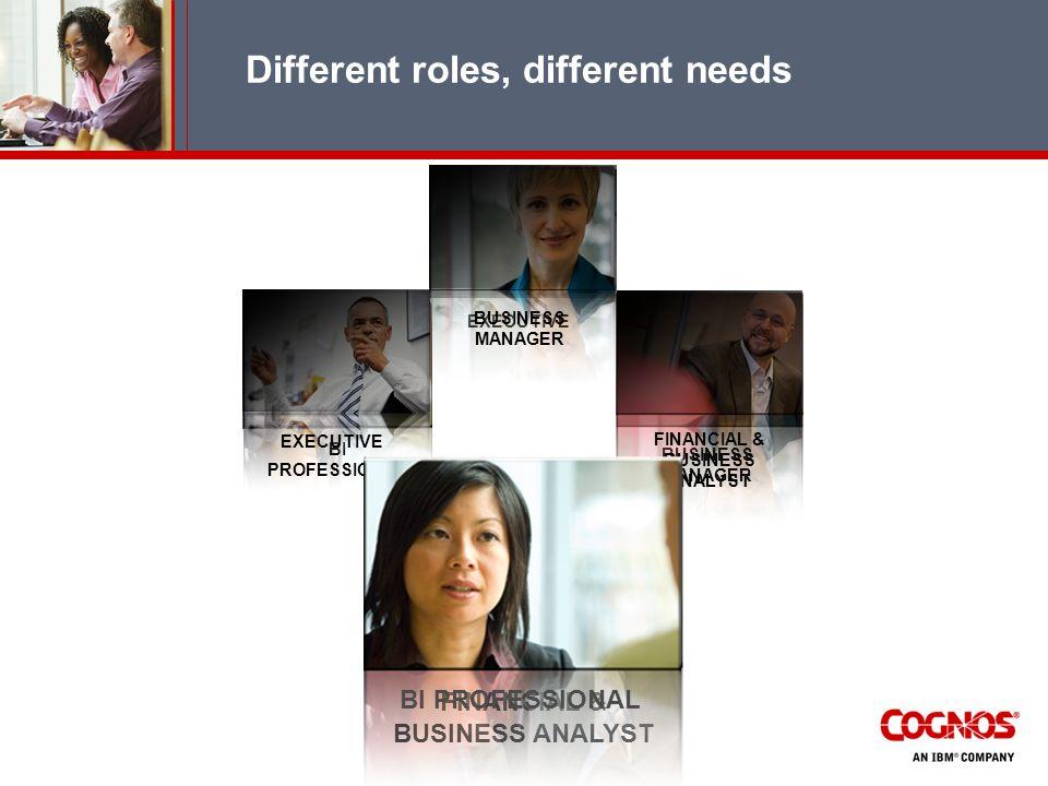 BI PROFESSIONAL EXECUTIVE BUSINESS MANAGER EXECUTIVE BUSINESS MANAGER FINANCIAL & BUSINESS ANALYST BI PROFESSIONAL Different roles, different needs