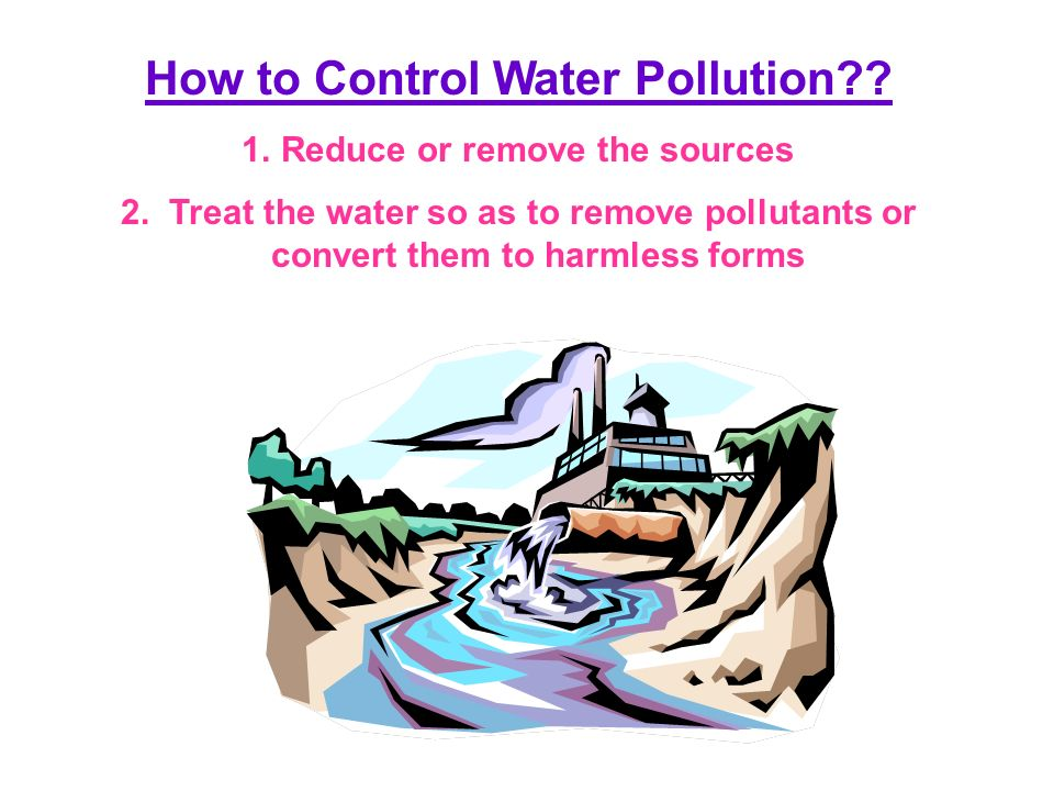 pollutions essay Essay on environmental pollution: causes, effects and solution category: blog, environment on february 5, 2014 by ankita mitra environmental pollution refers to the introduction of harmful pollutants into the environment.