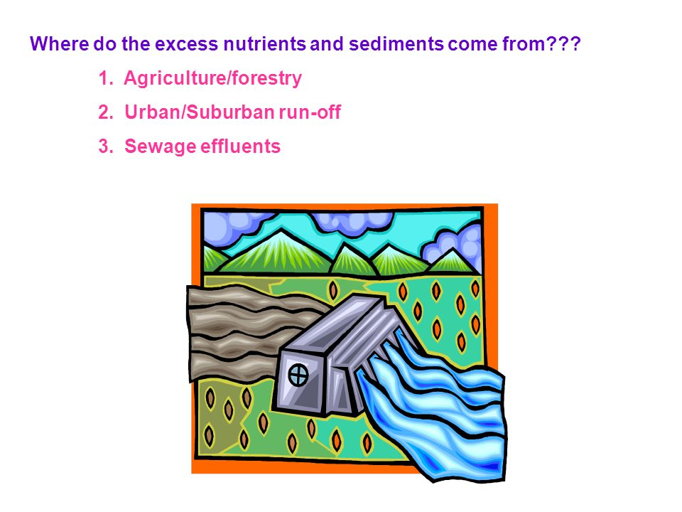Where do the excess nutrients and sediments come from??? 1. Agriculture/forestry 2. Urban/Suburban run-off 3. Sewage effluents