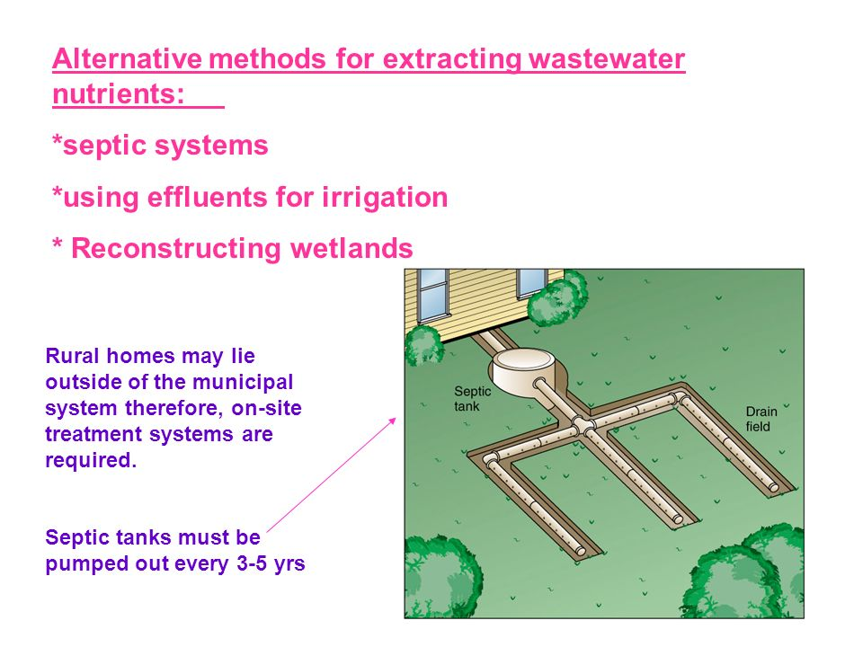 Alternative methods for extracting wastewater nutrients: *septic systems *using effluents for irrigation * Reconstructing wetlands Rural homes may lie