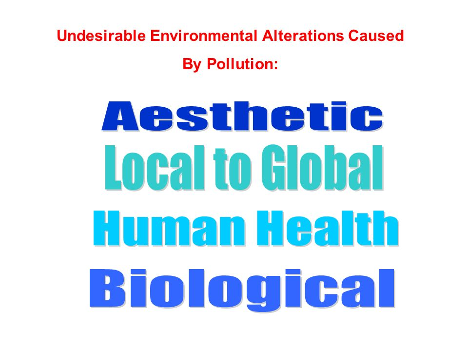 Undesirable Environmental Alterations Caused By Pollution: