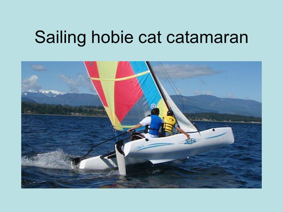 Sailing hobie cat catamaran