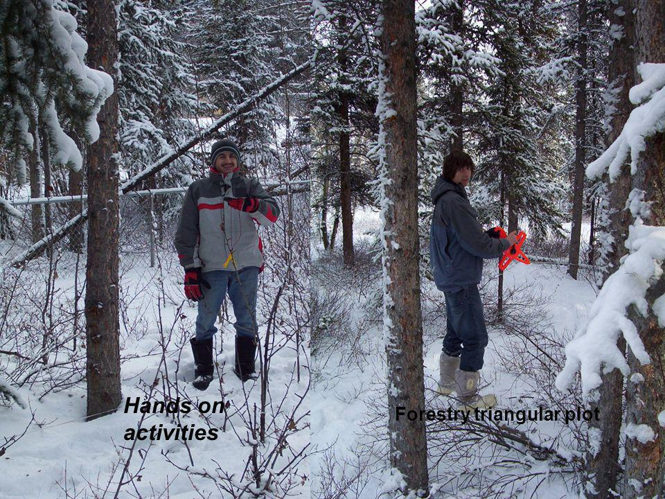 Hands on activities Forestry triangular plot