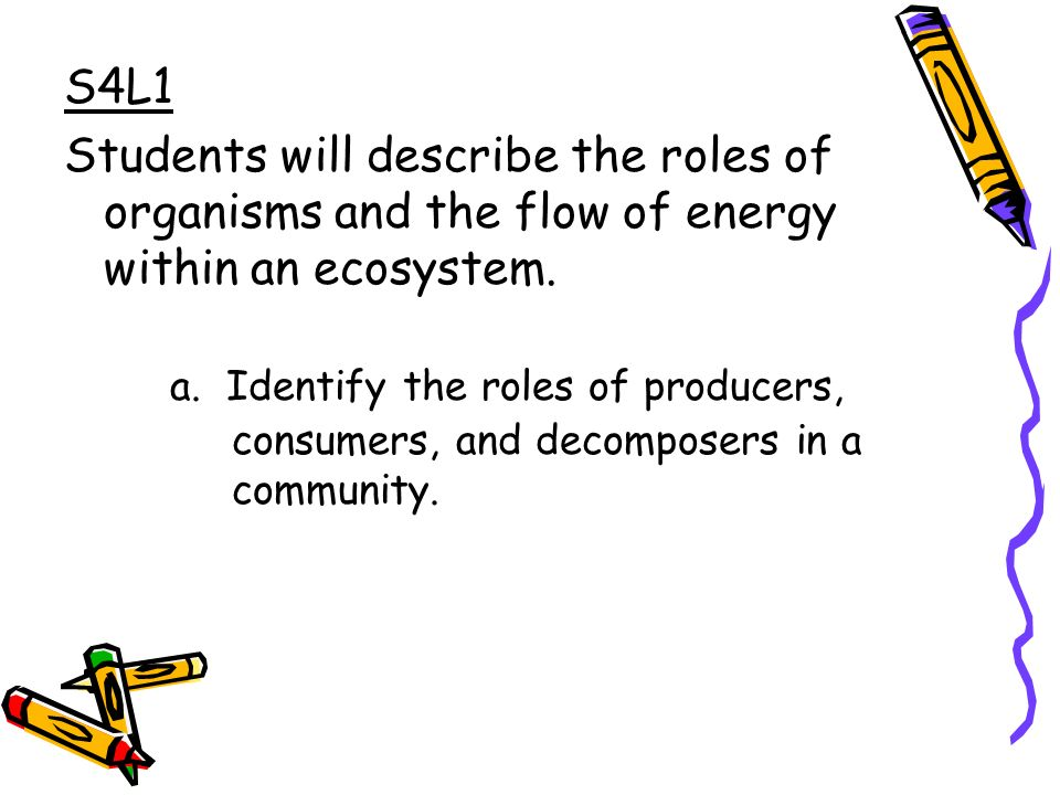 S4L1 Students will describe the roles of organisms and the flow of energy within an ecosystem.