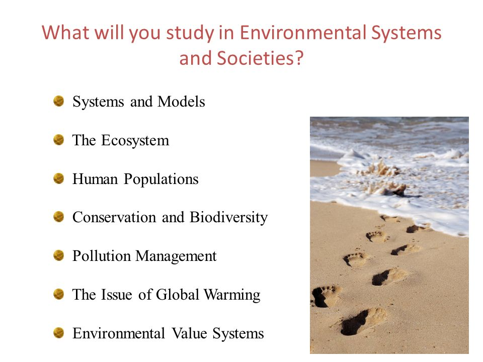 What will you study in Environmental Systems and Societies? Systems and Models The Ecosystem Human Populations Conservation and Biodiversity Pollution
