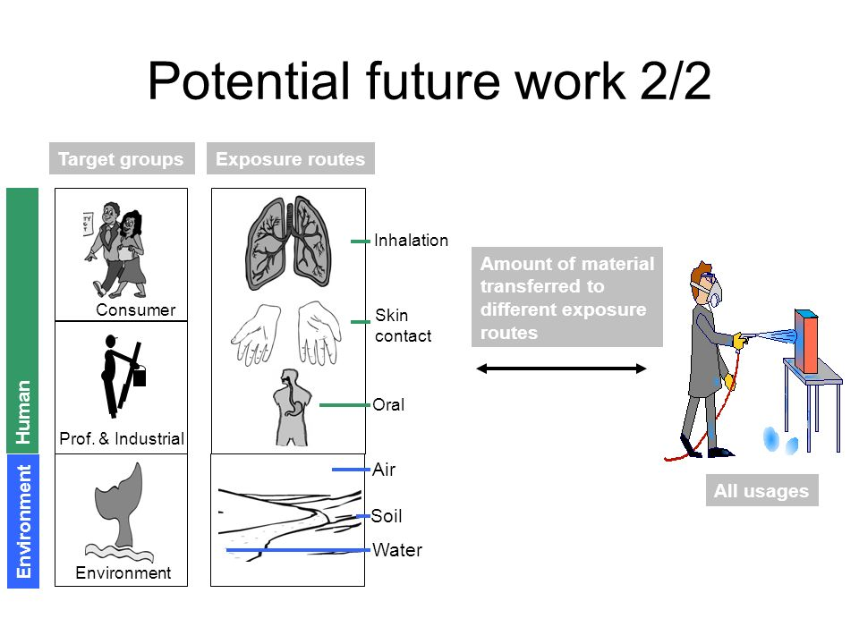 Exposure routes Potential future work 2/2 Environment Prof. & Industrial Consumer Target groups Water Soil Air Environment Human Oral Skin contact Inh