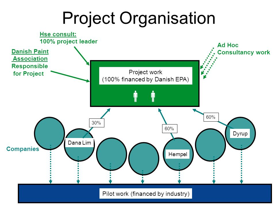 Pilot work (financed by industry) Companies Project Organisation Project work (100% financed by Danish EPA) Hempel Dana Lim Dyrup 30% 60% Hse consult: