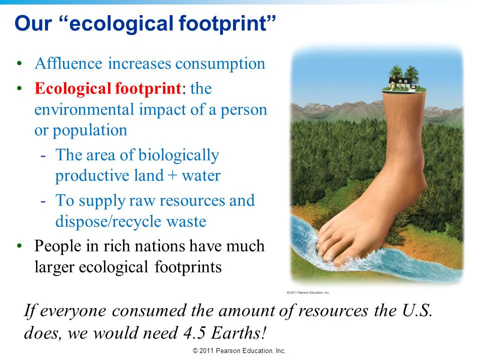 © 2011 Pearson Education, Inc. Our ecological footprint Affluence increases consumption Ecological footprint: the environmental impact of a person or