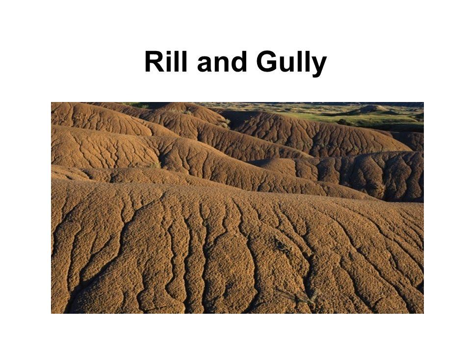 Rill and Gully