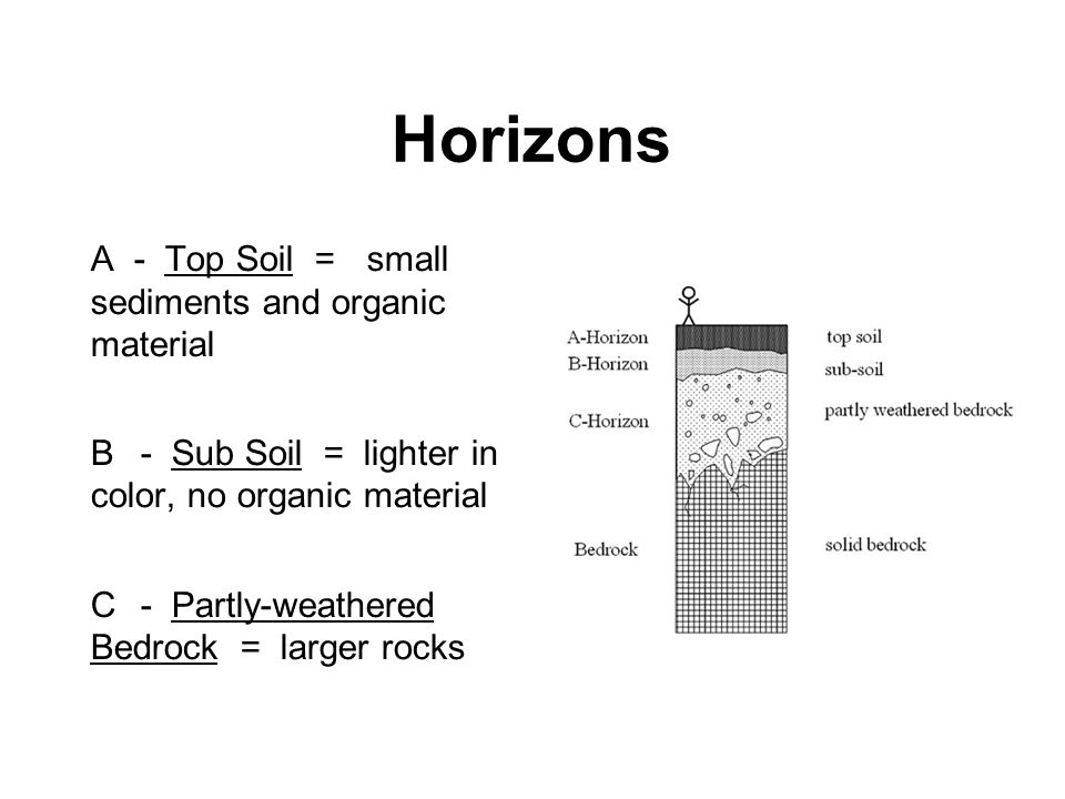Horizons A - Top Soil = small sediments and organic material B - Sub Soil = lighter in color, no organic material C - Partly-weathered Bedrock = large