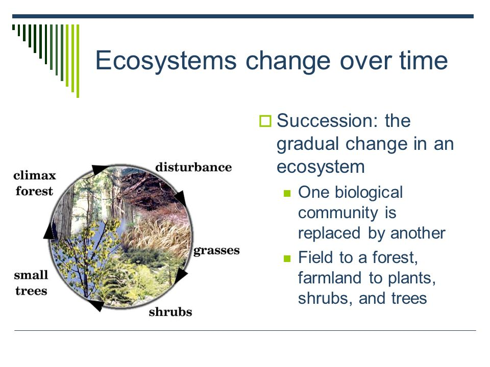 Ecosystems change over time Succession: the gradual change in an ecosystem One biological community is replaced by another Field to a forest, farmland