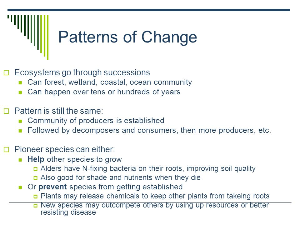 Patterns of Change Ecosystems go through successions Can forest, wetland, coastal, ocean community Can happen over tens or hundreds of years Pattern i