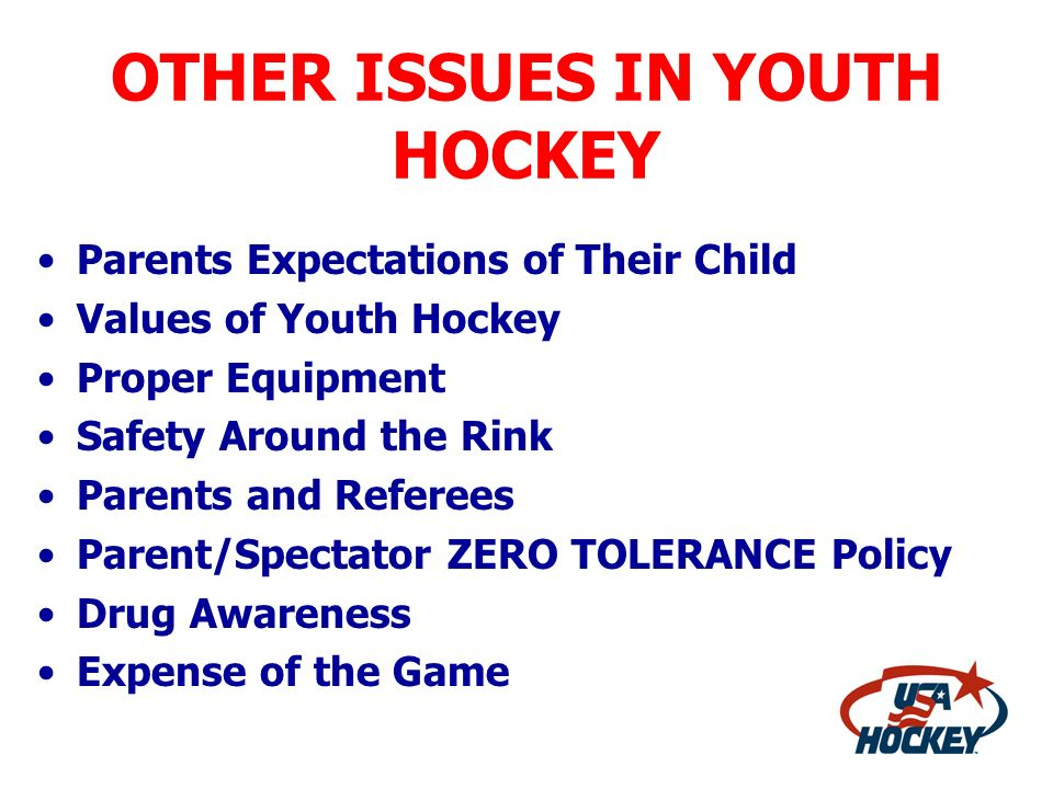 OTHER ISSUES IN YOUTH HOCKEY Parents Expectations of Their Child Values of Youth Hockey Proper Equipment Safety Around the Rink Parents and Referees P
