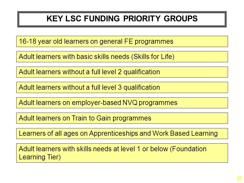 KEY LSC FUNDING PRIORITY GROUPS Adult learners with basic skills needs (Skills for Life) Adult learners without a full level 2 qualification 16-18 year old learners on general FE programmes Adult learners without a full level 3 qualification Adult learners with skills needs at level 1 or below (Foundation Learning Tier) Learners of all ages on Apprenticeships and Work Based Learning Adult learners on employer-based NVQ programmes Adult learners on Train to Gain programmes