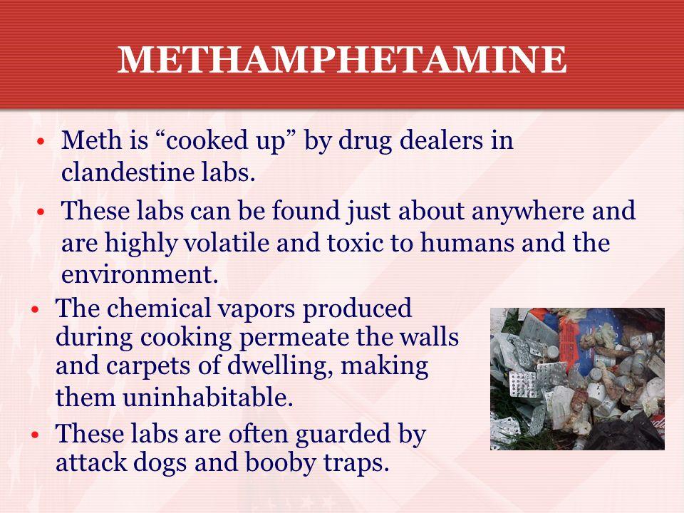 CRYSTAL, CRANK, SPEED, ICE – TROUBLE BY WHATEVER NAME METHAMPHETAMINE